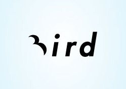 positive-negative-logo-bird