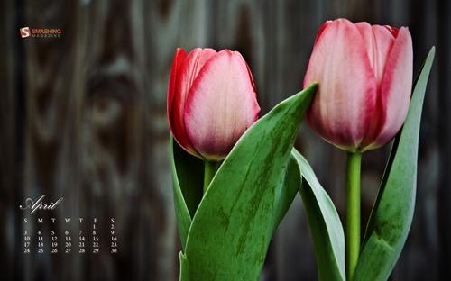april-11-blooming__35-calendar-1920x1200
