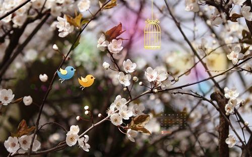 april-11-two_birds__17-calendar-1920x1200