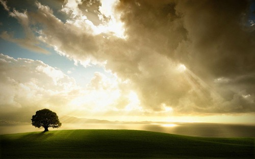gorgeous_wallpaper_collection_79