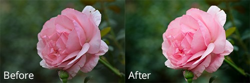 before-and-after-3