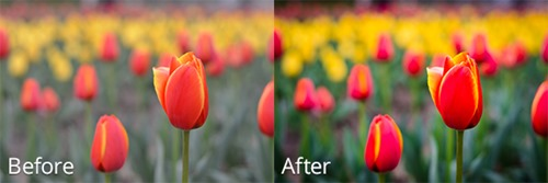 before-and-after-4