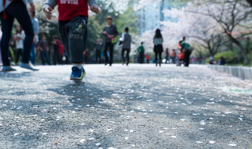 Run on Petals